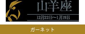 【山羊座】ガーネット