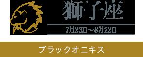 【獅子座】ブラックオニキス